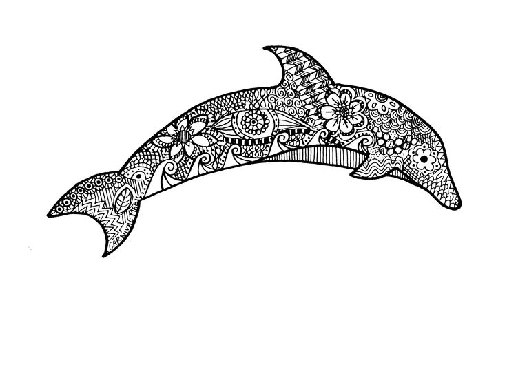 Zentangle Dolphin Drawing