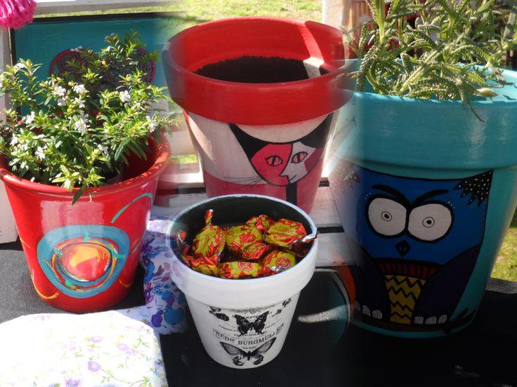 macetas. plantas. y muchas mas decoracion para tu hogar