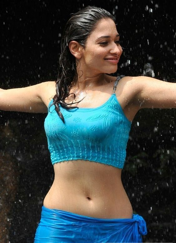 South Indian Actresses Pics South Indian Actress Wet Body -3351