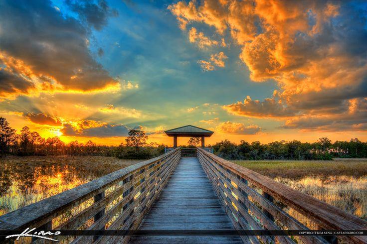Boardwalk Wetlands Sunset Sweetbay Park West Palm Beach Florida