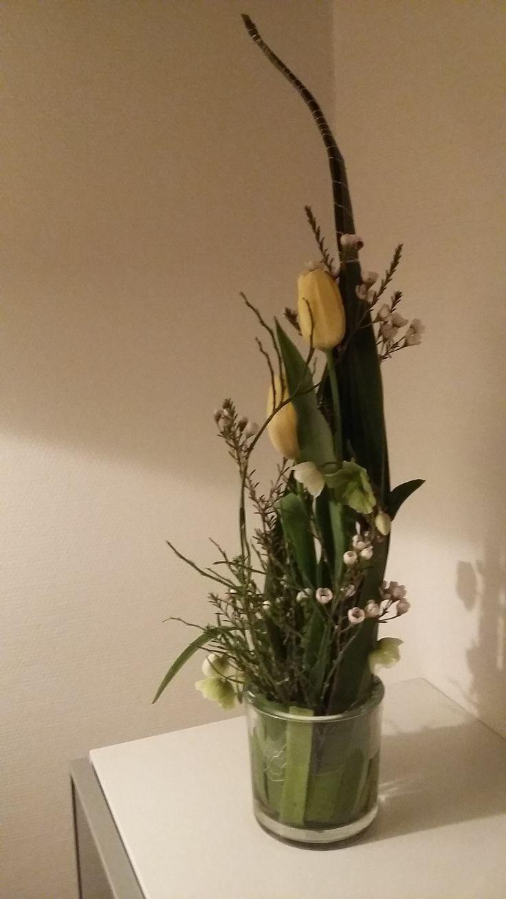 forårs dekoration med thyfa, helliborus voksblomst og franske tulipaner