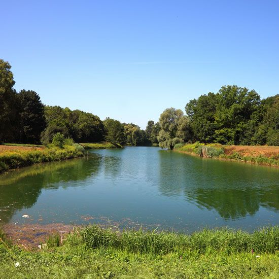 17 best images about farm pond possibilities on pinterest for Farm pond maintenance