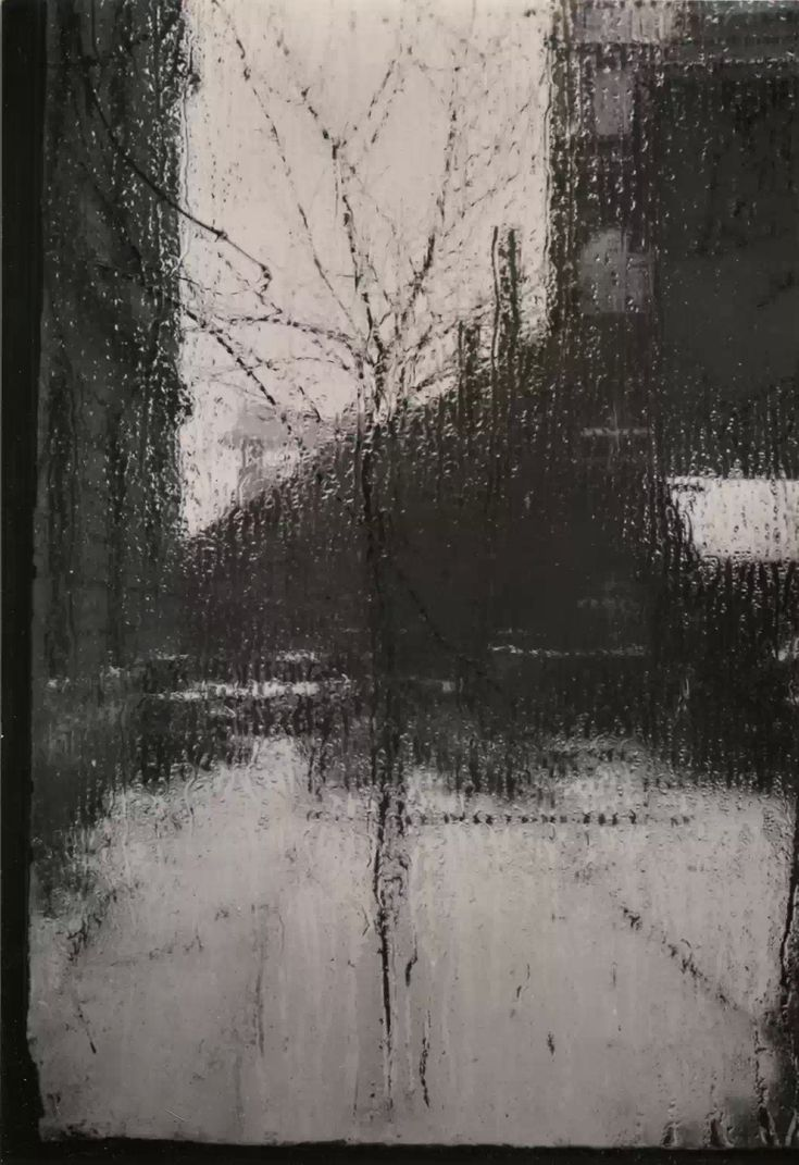 Alfred Stieglitz - Window of my Studio                                                                                                                                                                                 More