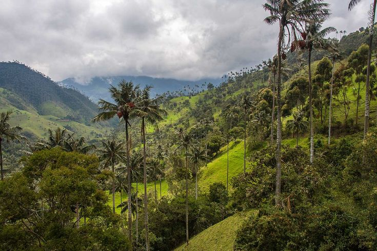 Colombia - Road from Salient to Ibagué
