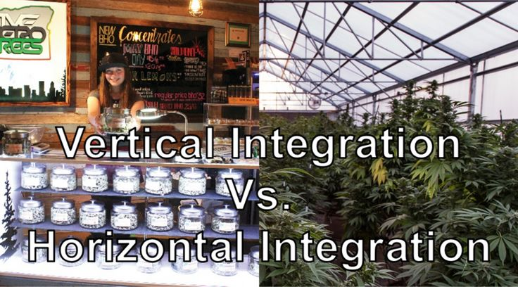 Vertical Integration Vs. Horizontal Integration | Florida Cannabis Coalition | RSS Feed | Bloglovin'