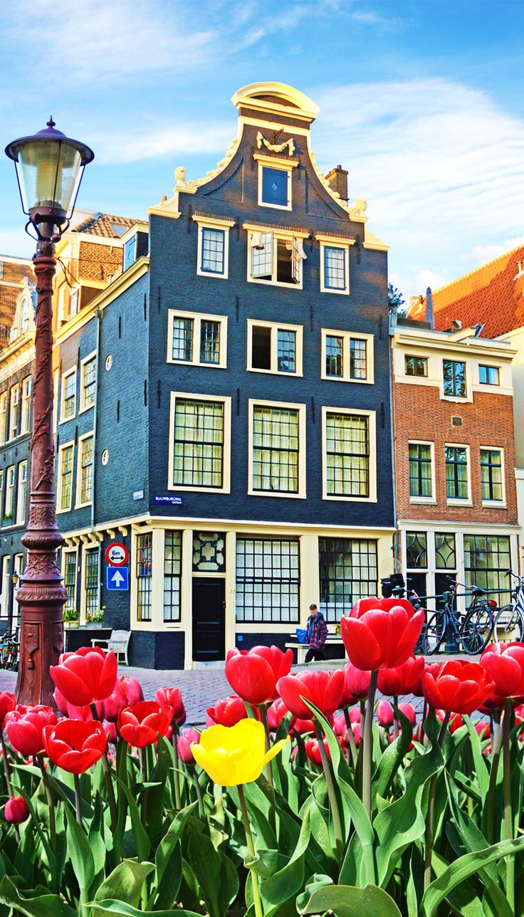 I remember my trip to #Amsterdam as clear as the sky in the Caribbean on a sunny day. I have always wanted to visit. Its architecture, those beautiful Dutch houses, its windmills, dikes and the many canals made the place very appealing.