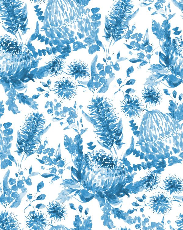 Australian Flora by Charis Harrison, via Behance