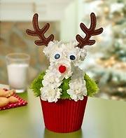 Reindeer Pup-cake™ 1800flowers
