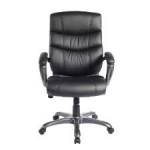 "Found it at Wayfair - 'Decision-Maker"" High-Back Executive Chair"