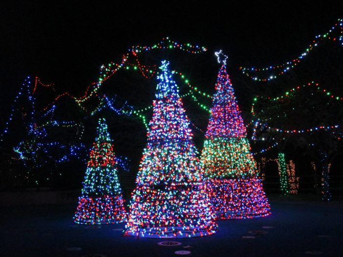 httpsipinimgcom736x122a8c122a8c3ff3927e9 - Best Christmas Tree Lights
