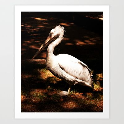 Basking #6 Art Print by Plasmodi - $16.00