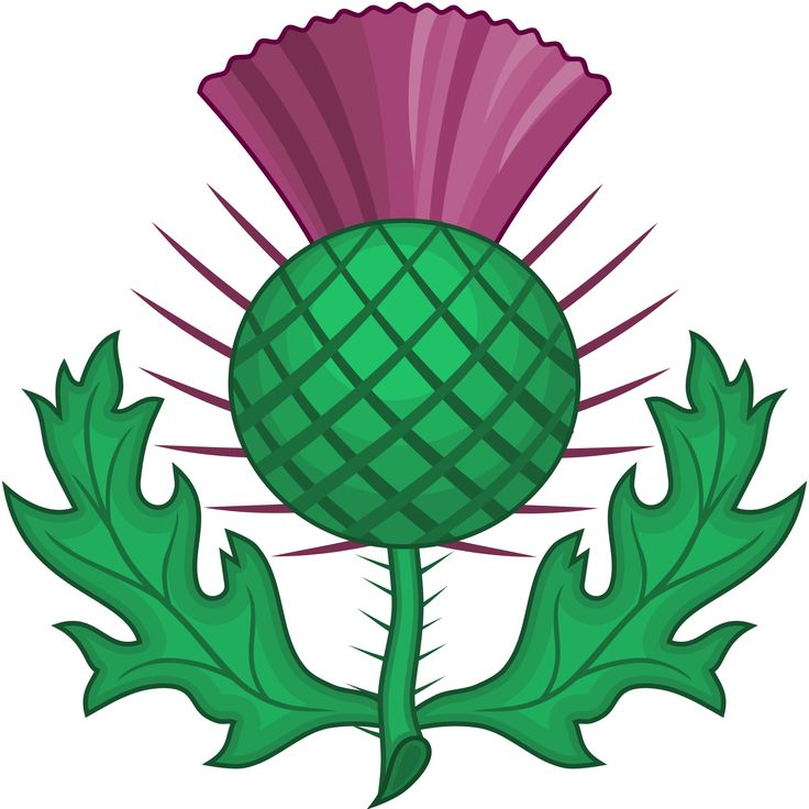 National symbols of Scotland Wikipedia, the free