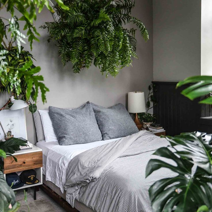 5 Tips for Keeping Houseplants Alive this Winter /  Design*Sponge