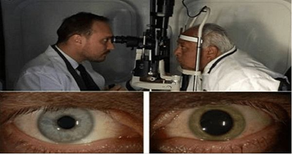 90-Year-Old Man Says That This 4-Ingredient Remedy Improved His Vision.The Doctor Who Made The Remedy Was Amazed By The Results!