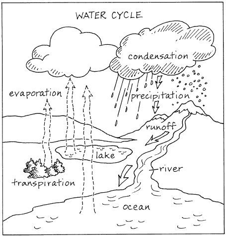 92 best STEM Water cycle images on Pinterest | Water cycle ...