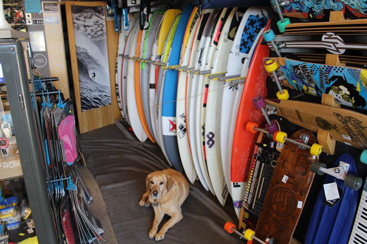 Surf Shop located at Porto - Portugal
