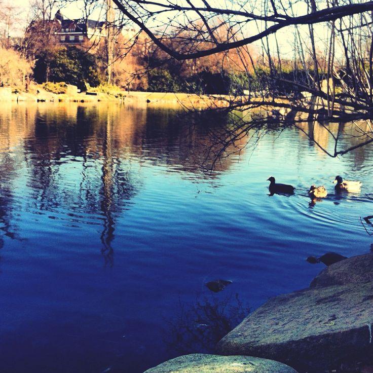 #peace #park #beautiful #nice