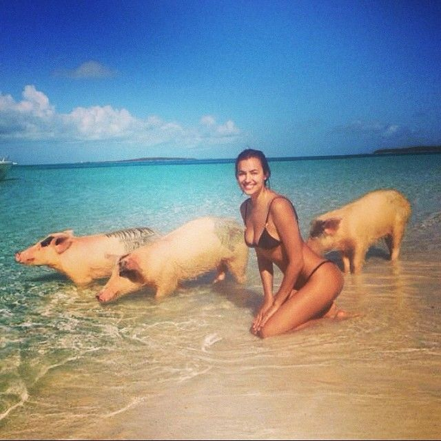 Irina Shayk poses with pigs in this beach-snapped image.