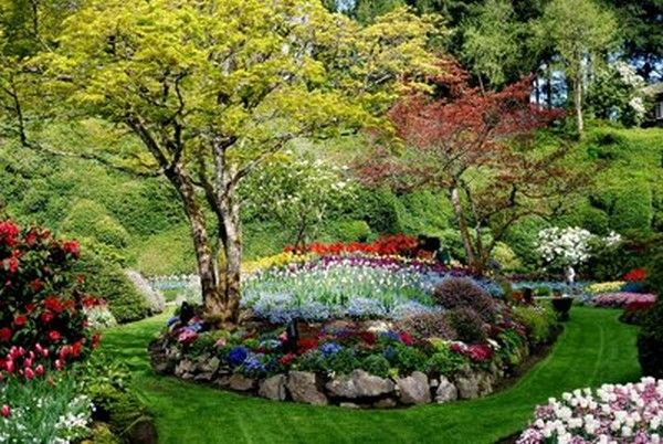 16 best GARDEN OF EDEN IMAGES images on Pinterest | Garden of eden ...