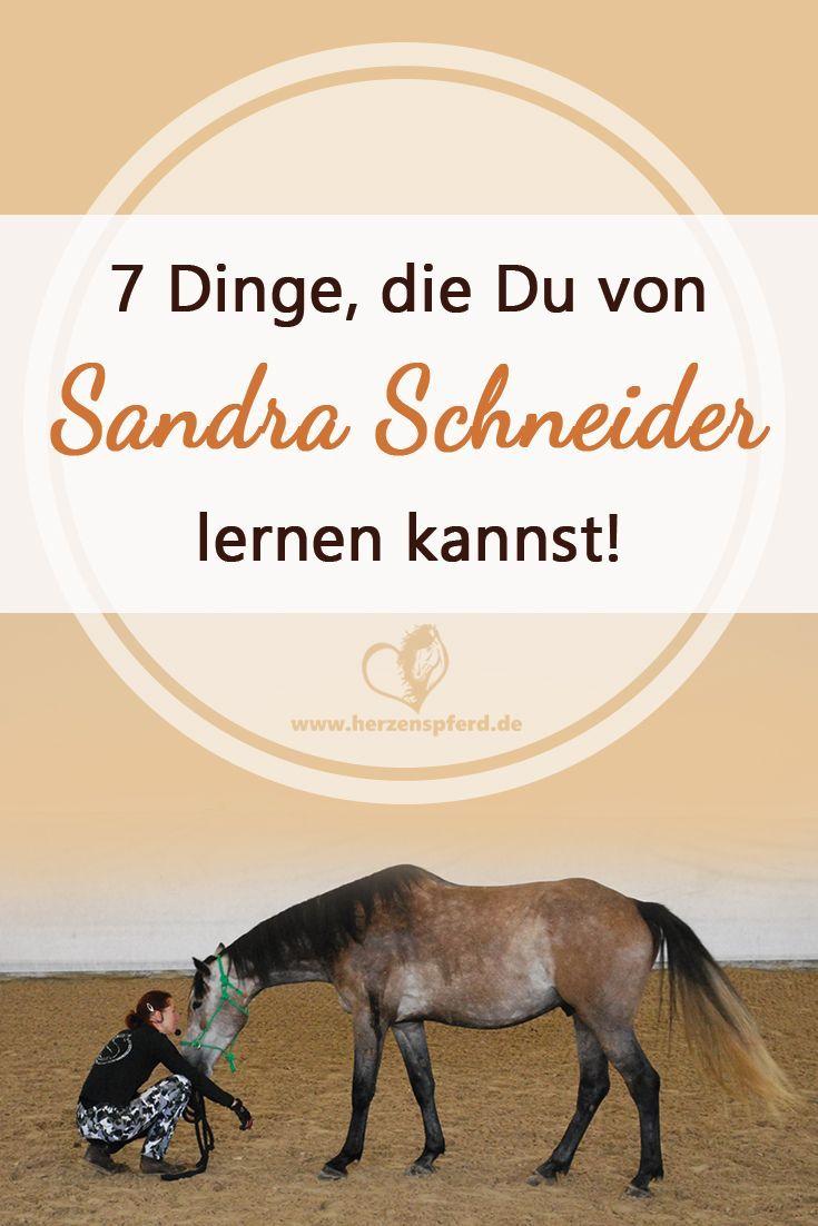 130 besten Pferde und Reiten Bilder auf Pinterest   Pferde, Pferd ...
