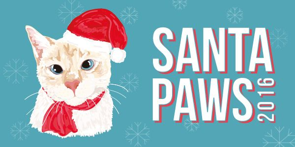 Thinking about getting #Santa #Paws #Pet #Photos for your #cat or #dog?