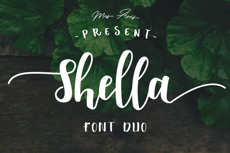 Shella Font  Shella Font Duo is a hand brushed, fun, warm, and cozy typeface duo with 3 different fonts style. Shella Clean font combines with the Shella sans or Shella rough font to make each word unique and stunning, making it suitable for any range of design needs.