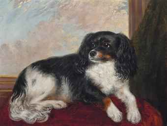 English School, 19th Century -   A King Charles Spaniel seated on red cushion -   oil on canvas,   16 x 21 in. (40.7 x 53.4 cm.)