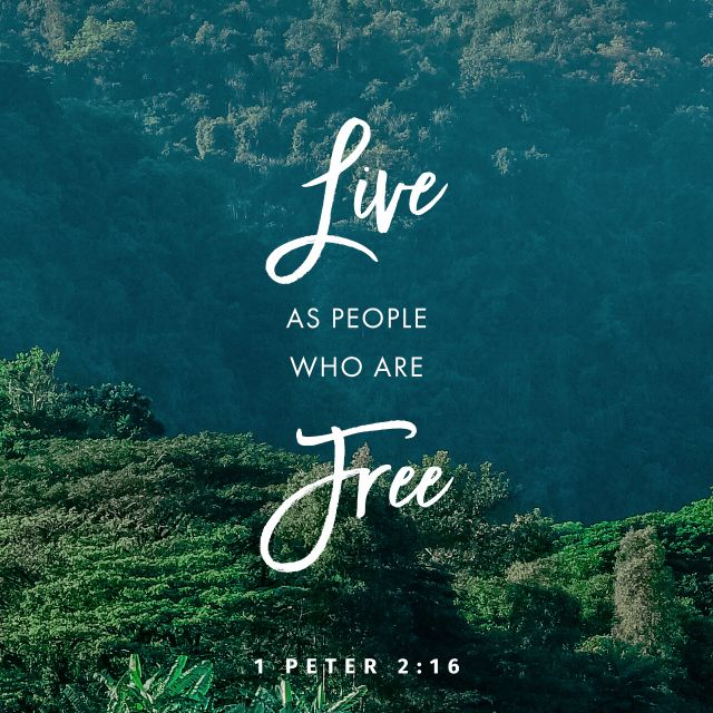 15 For this is the will of God, that by doing good you should put to silence the ignorance of foolish people. 16 Live as people who are free, not using your freedom as a cover-up for evil, but living as servants of God. (1 Peter 2:15-16 ESV)