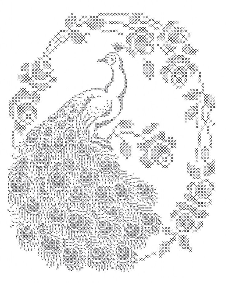 JUST THE FEATHERS... Peacock cross stitch pattern