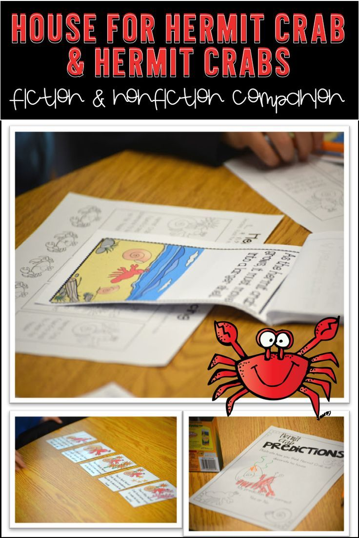 A House for Hermit Crab - Worksheet