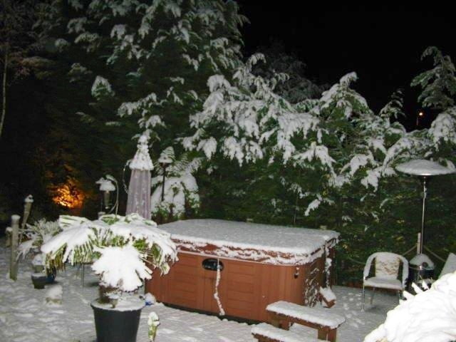 Our back garden in Hawarden during winter, happy times