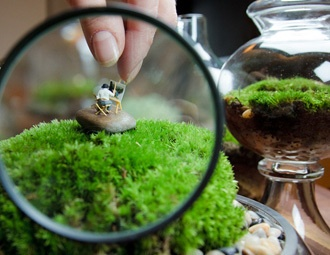 I pinned this from the Twig Terrariums - Artisan Terrariums & Whimsical Accents event at Joss and Main!