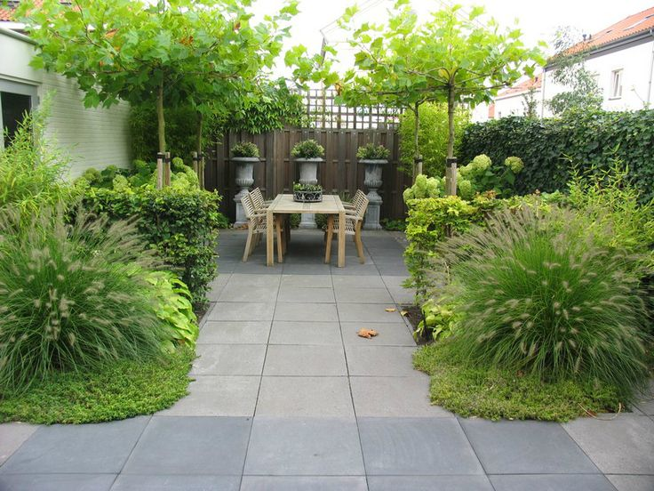 Small green and modern garden with lots of grasses.