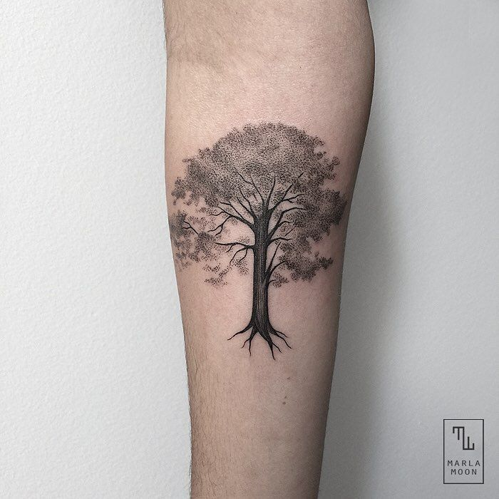 """4,583 Likes, 149 Comments - @marla_moon on Instagram: """"Hobbiton's tree."""""""