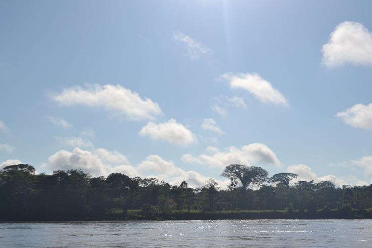 The magnificent Amazon River! #Travel Discover deep Colombia with Mambe Travel!