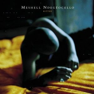 Beautiful, a song by Meshell Ndegeocello on Spotify