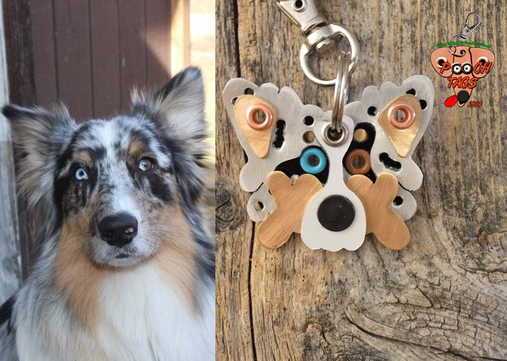 Pooch Tags - Pooch Tags. Custom Pet Tags, Custom Likeness Dog Tags, Unique Pet Tags, Custom Pet Tags, Dog Tags, Dog ID Tags, Handmade Pet Tags, Engraved Pet Tags, Mixed Metals