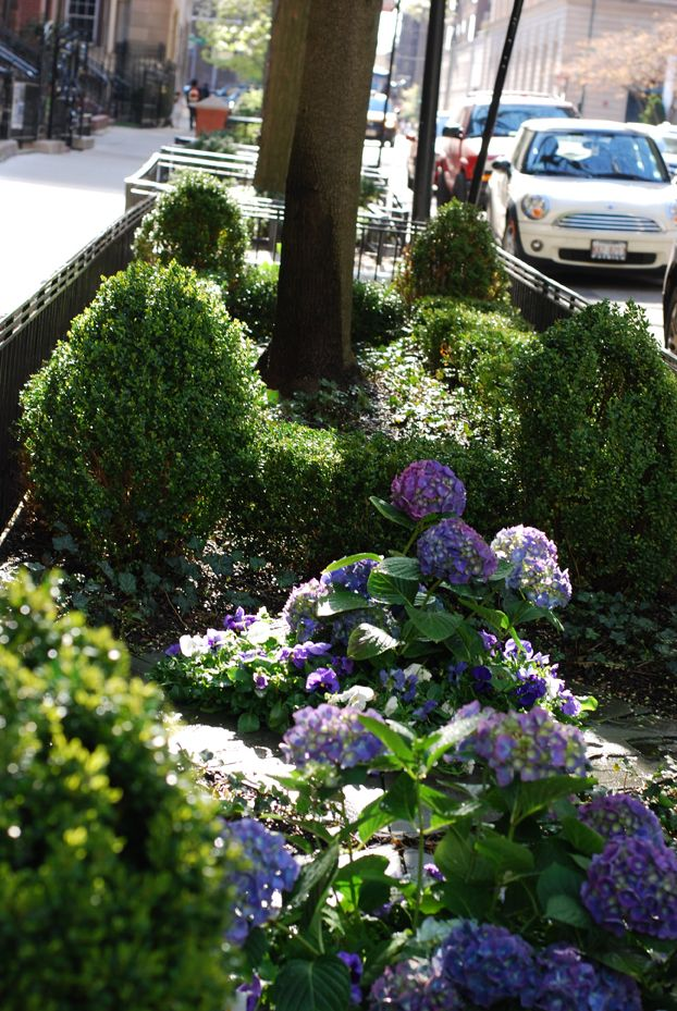 City Urban Parkway Chicago Landscape Design