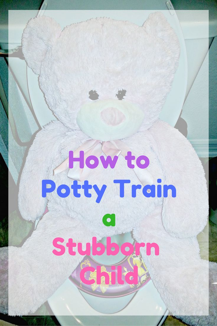 how to train a 2 year old pottie training