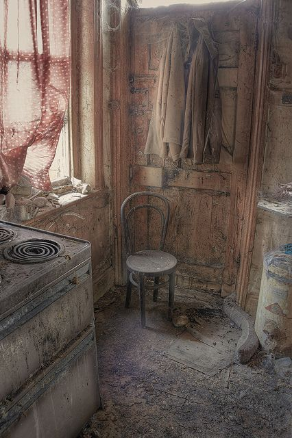 Lost | Forgotten | Abandoned | Displaced | Decayed | Neglected | Discarded | Disrepair | Parrot House