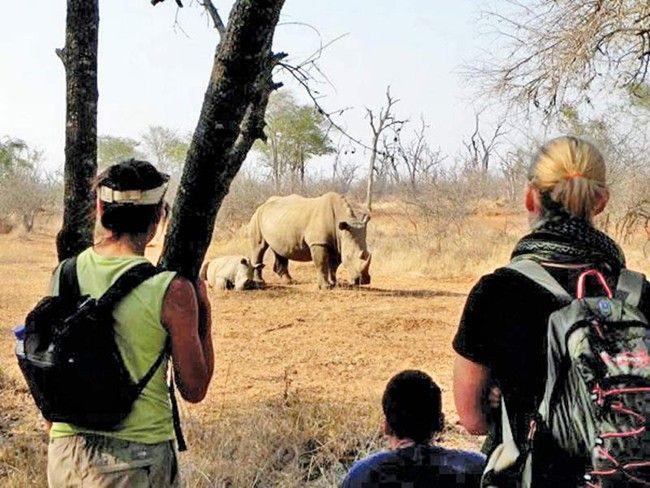 Fra den dynamiske by Cape Town, til den afsvedne ørken i Namibia og de eventyrlige vildt reservater i Botswana og Zimbabwe, så indeholder denne tur alle højdepunkterne i regionen. Det er en rejse igennem slående kontraster, menneskelige og landskabsmæssige. På turen vil I bl.a sejle i kano på Orange floden, klatre i gigantiske sandklitter, køre game drives i nogle af Afrikas mest fantastiske parker, og opleve de mægtige Victoria Falls.