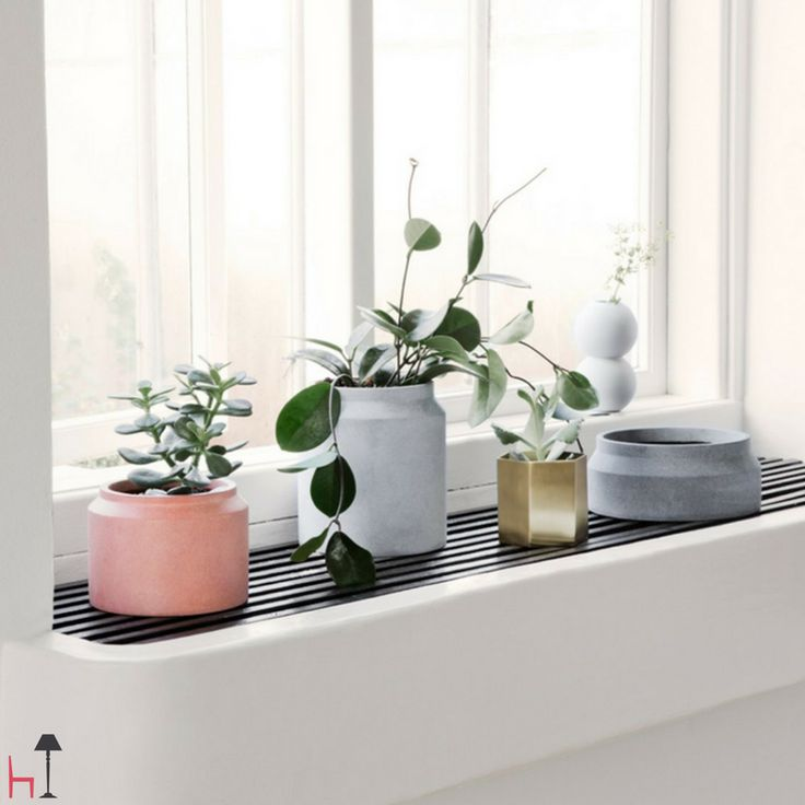 Arrange your plants in these minimalistic pots with geometric details.