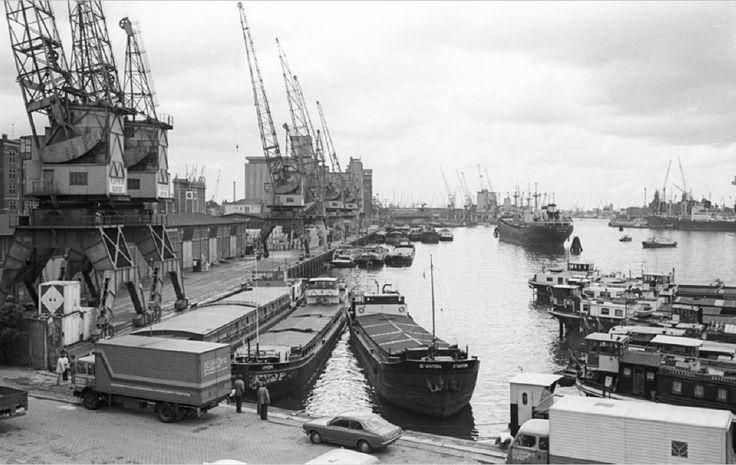 De Rijnhaven, 2 juni 1975. De Rijnhaven is een havenbekken in Rotterdam. De Rijnhaven is één van de oudste havens op de zuidoever van de Nieuwe Maas. De aanleg duurde van 1887 tot 1895. De oppervlakte is 28 ha. Ze werd in eerste instantie gegraven als berghaven voor Rijnschepen, voornamelijk in de winter als de zeeschepen hun lading moesten lossen en de Rijnschepen door bevriezing van de bovenrivieren de Rijn niet konden opvaren.