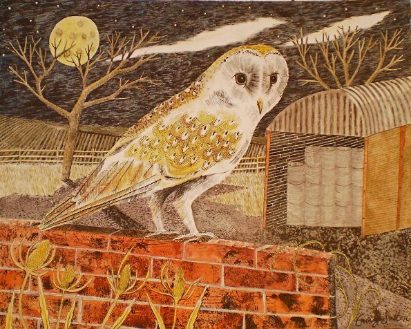 barn owl Emily Sutton