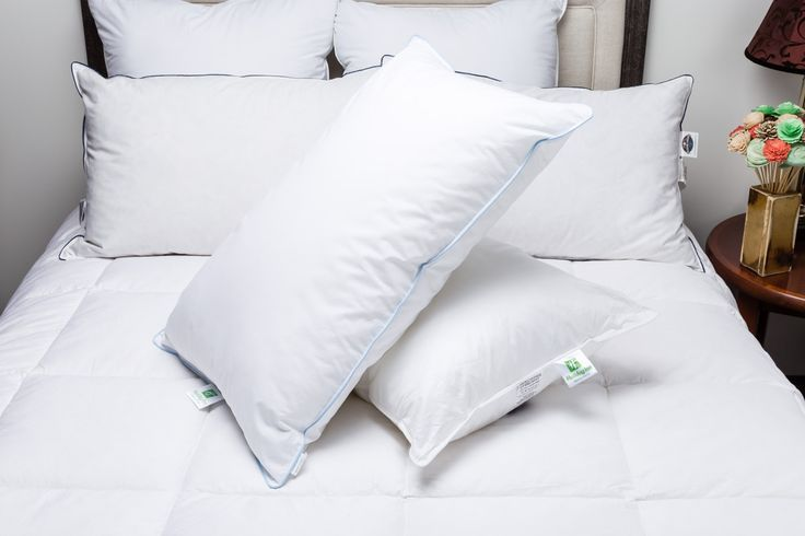 Holiday Inn Express ® Soft and Firm Support Pillows Combo