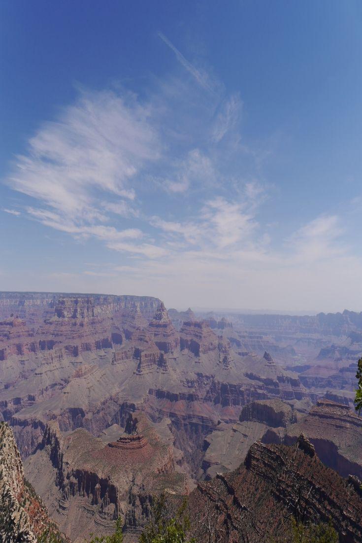 Die beliebtesten Videos von Tag: brandy canyon