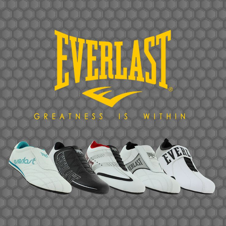 New Range of Everlast Sneakers now available at Shoeshed!