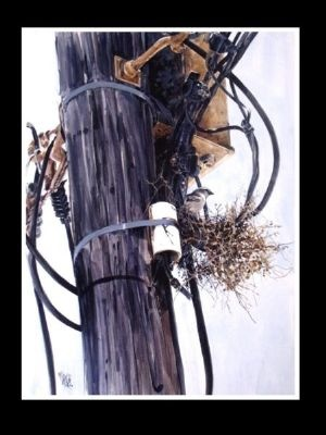 The Nest - Acrylic | Mynderd Vosloo | Painters Online