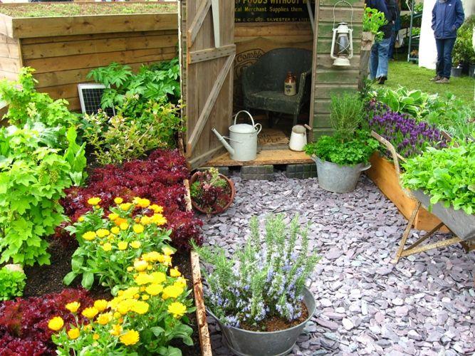 cute garden ideas.