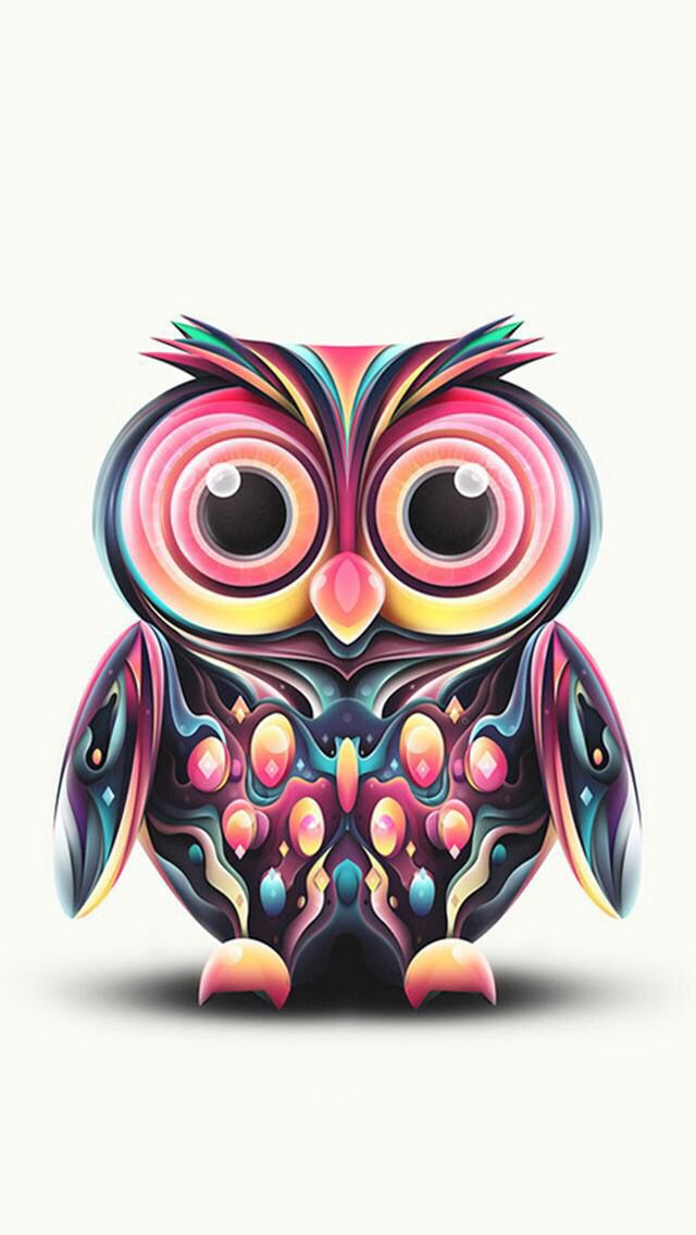 cute owl wallpaper  u2026